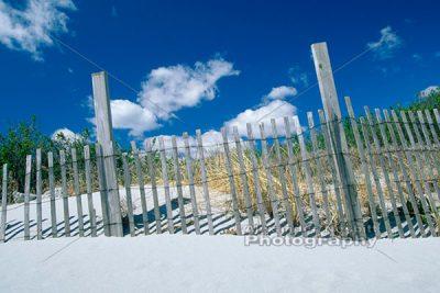 Dune Fences 1