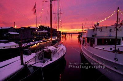 Magenta Sunset - winter 1