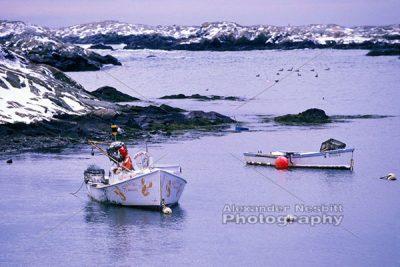 Lobster Boats - Winter 1