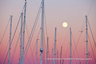 Masts and full moon, Newport-shipyard