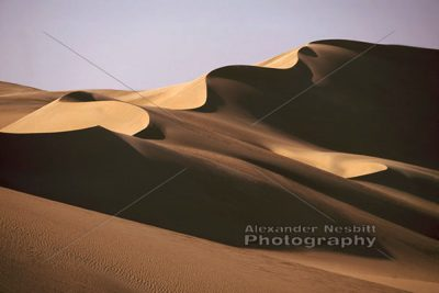 Sinuous Dune 1