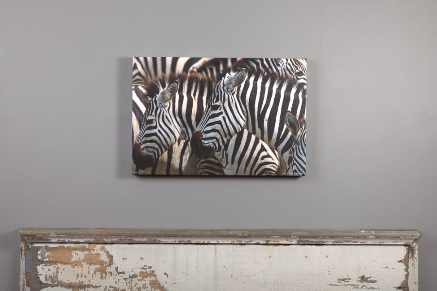 image of zebras printed on canvas hangs above mantle