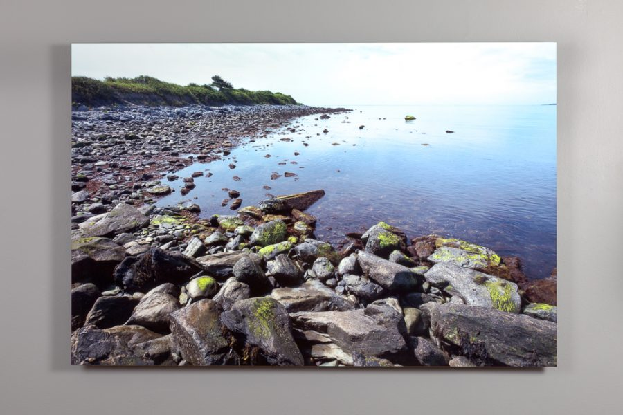 image of the rocky shoreline at sachuest point in middletown, ri