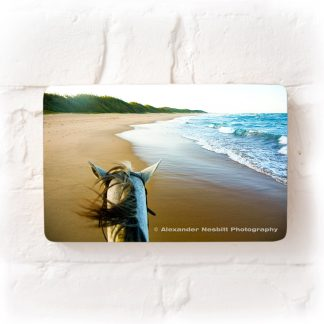 Horse ride down pristine Mamoli Beach, Southern Mozambique
