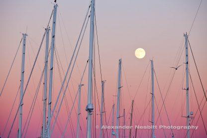 Masts and full moon, Newport-shipyard